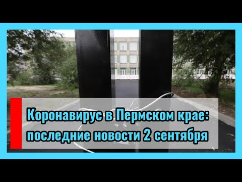 🔴 Коронавирус в Пермском крае: последние новости 2 сентября