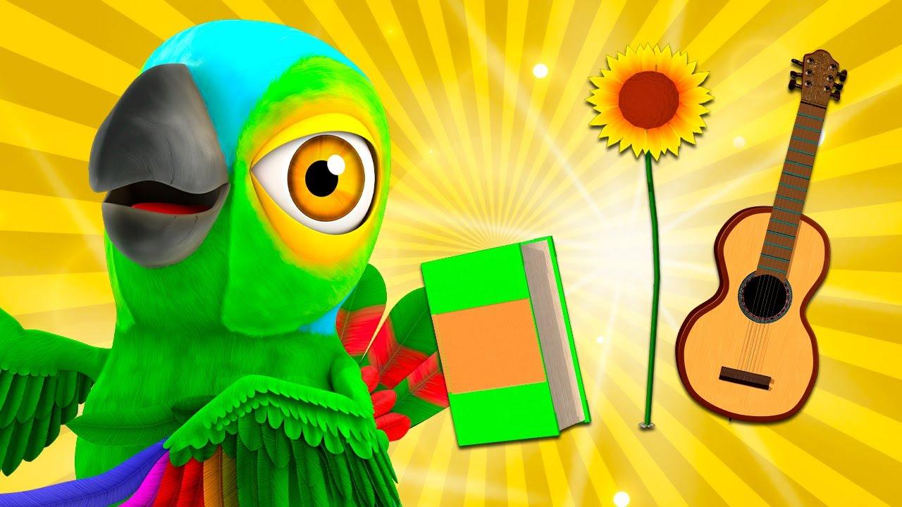 Il Pappagallo Peppe e Pássaro - Brinque e Aprenda! | A Brincar