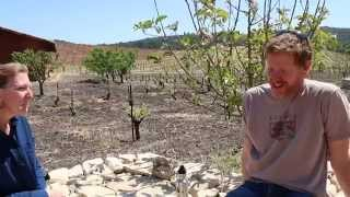 Tablas Creek  with Jason Haas on BioDynamics in Wine