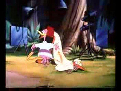 Funny Bird Annoying Donald