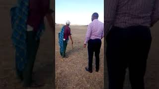 Land broker in Kitengela