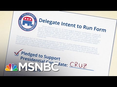 The Best Hope For The Stop Donald Trump Movement   MSNBC