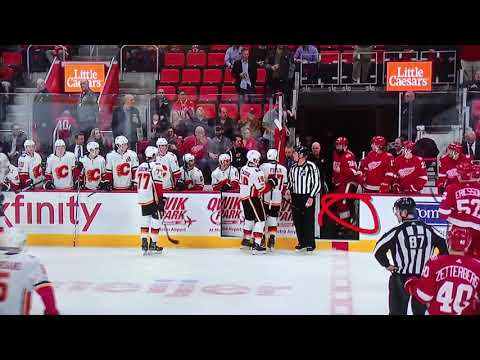 11/15 Calgary Flames vs Detroit Red Wings Brawl