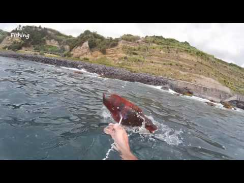Spearfishing Azores 2016 part 2