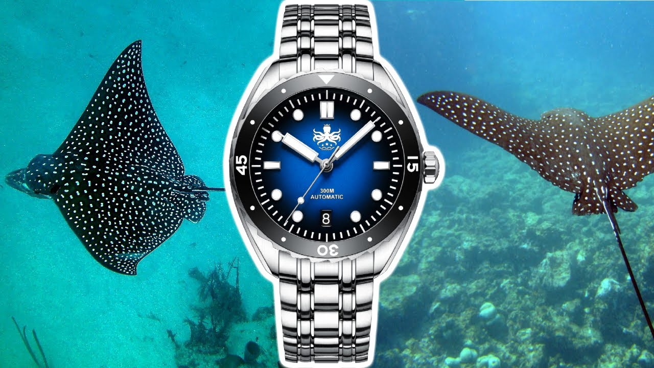 Phoibos Eagle Ray 300M Dive Watch - Great value Watch that puts many big brands to shame