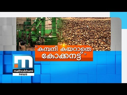Budget Ignores Crisis-ridden Coconut Development Projects| Mathrubhumi News