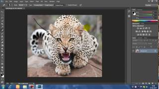 HOW TO DOWNLOAD ADOBE PHOTOSHOP CC IN JUST 90mb (WITH PROOF).   by GAMER4LIFE
