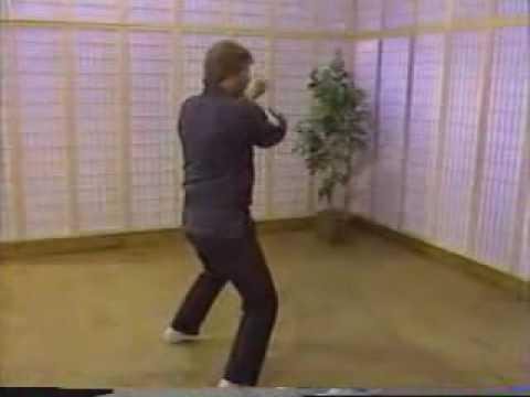 Larry Tatum Kenpo Form 4