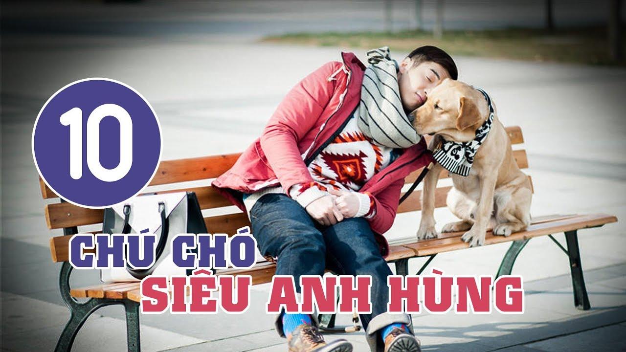 image Chú Chó Siêu Anh Hùng - Tập 10   Tuyển Tập Phim Hài Hước Đáng Yêu