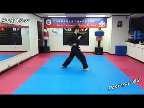 Taekwondo - Poomsae 8 (Pal Jang) Slow-motion & Mirror