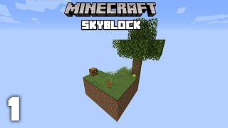 A New Adventure - Minecraft Skyblock Let's Play | Part 1