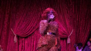 Bob the Drag Queen Stand Up Comedy Houston