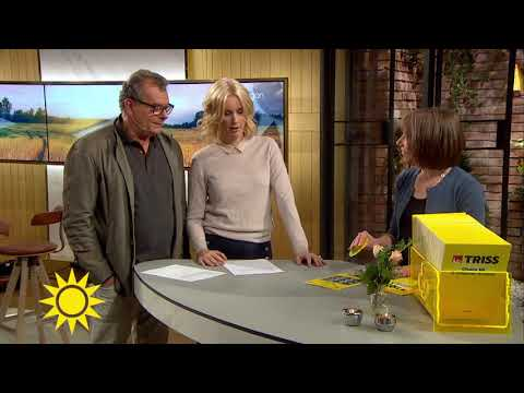 Triss-vinnaren tackar svärmor för lotten - Nyhetsmorgon (TV4)