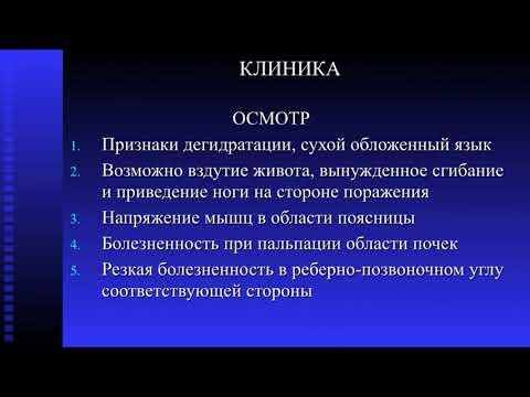 Пиелонефрит Лекция