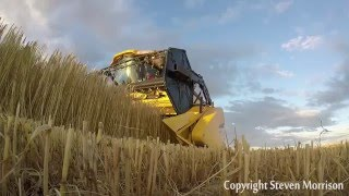 Grain Harvest 2015 Moray, Scotland