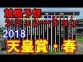 天皇賞春 2018 競馬予想シミュレーション by StarHorsePocket(SEGA)