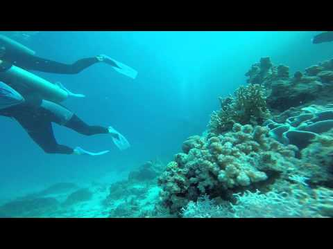 Diving at Red Sea, Hurghada - Egypt (5-5-2015) Go Pro Hero 4 Silver