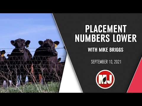 Placement Numbers Lower | Mike Briggs | September 10, 2021