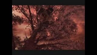 Red Ninja: End of Honor PlayStation 2 Trailer - Trailer 2