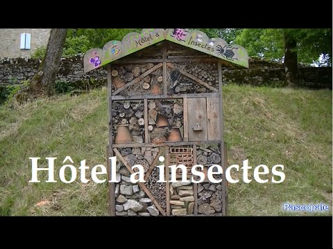 h tel a insectes un bonheur pour les insectes et l 39 environement youtube. Black Bedroom Furniture Sets. Home Design Ideas