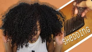 NATURAL HAIR SHEDDING: How Much Is NORMAL? // Samantha Pollack