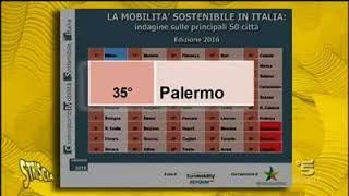 Servizio di Stefania Petix sull' Amat Palermo