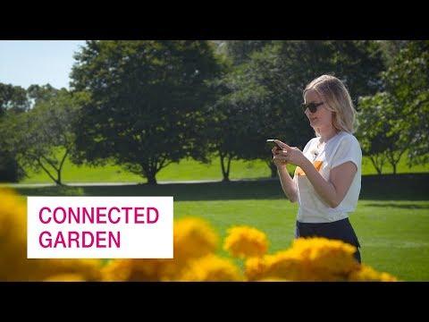 Social Media Post: Connected Garden - Netzgeschichten