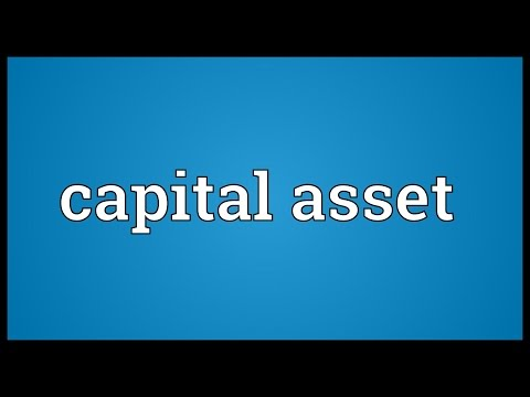 Capital asset Meaning