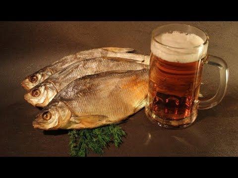 Как солить и сушить рыбу под пивко