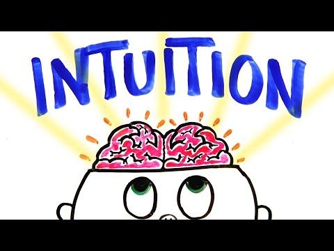 Should You Trust Your Gut Instinct?