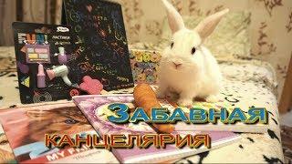СНОВА В ШКОЛУ (BACK TO SCHOOL 2017) ЗАБАВНАЯ КАНЦЕЛЯРИЯ!