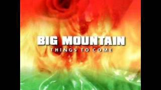 Watch Big Mountain The Only One video