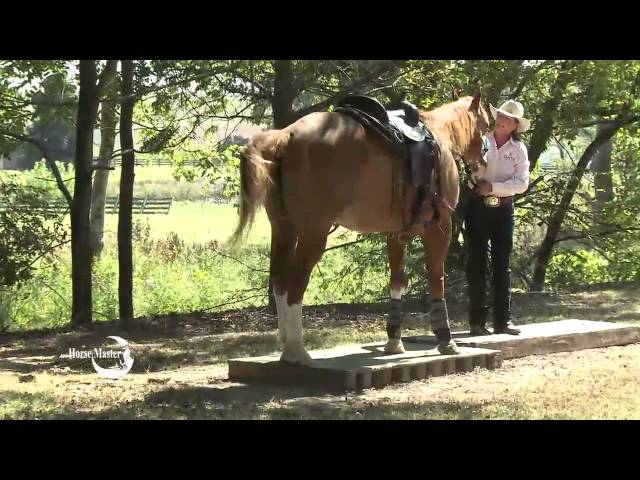 Julie Goodnight: Quick Tip Get off and Lead Across, Trail Riding, CHA