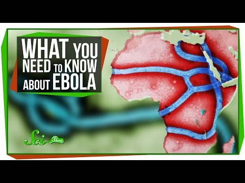 Ebola Virus Outbreak – We're all going to die!