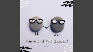 Tum Mile Dil Khile (feat. Abhijeet Masram) (Acoustic)