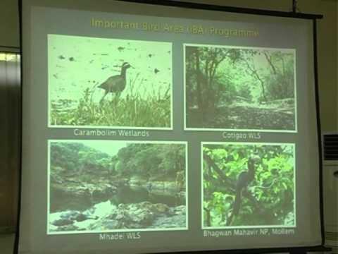 Presentation: Goa Bird Conservation Network