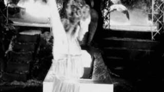 Video Dracula: Pages from a Virgin's diary (Un-Dead!) - Guy Maddin download MP3, 3GP, MP4, WEBM, AVI, FLV Januari 2018