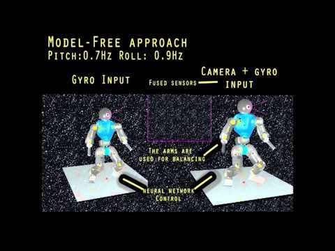 Model-based and model-free approaches for postural control of a compliant humanoid robot.