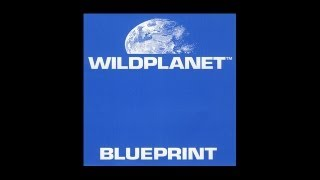 Wild Planet - Cabasa Cabasa
