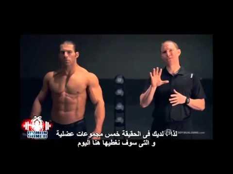 التشريح-العضلى-لعضلات-الأرجل-و-أفضل-التمارين-للحصول-على-عضلات-أرجل-ضخمة-الجزء-الأول-مترجم