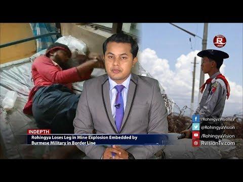 Rohingya Daily News 18 June 2017