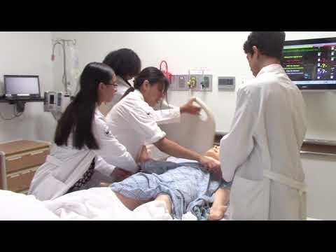 Students learn medicinal skills in physician program