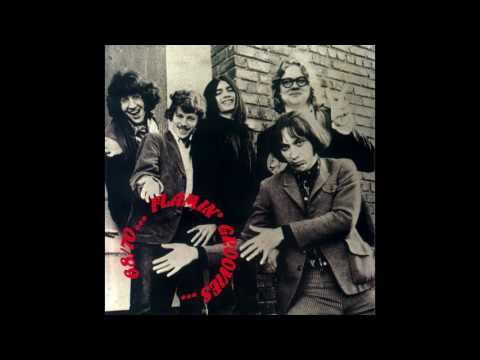 The Flamin' Groovies - Good Morning, Mr Stone