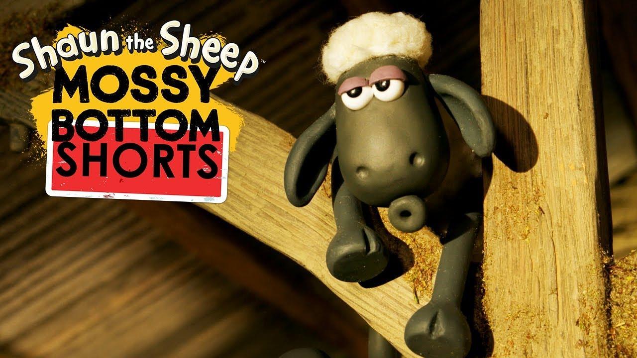 Trận bóng mini | Mossy Bottom Shorts | Những Chú Cừu Thông Minh [Shaun the Sheep]