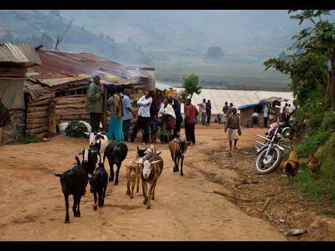 UGANDA and RWANDA a unique Travel Experience