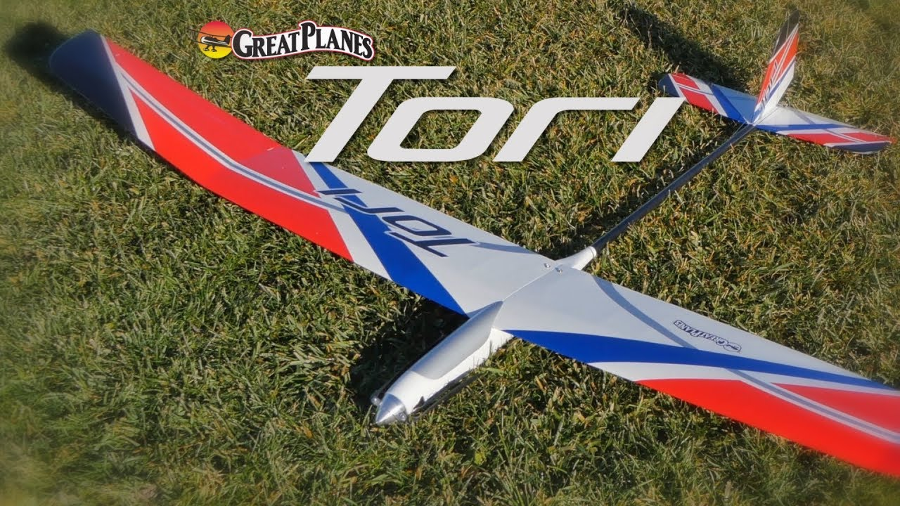 Tori EP Sailplane: Raw Performance