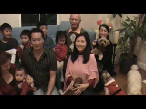 Dr. Thu The Nguyen - Thuy Nga Show - Viet face TV - TrungTamAsiaChannel - VNs Got Talent