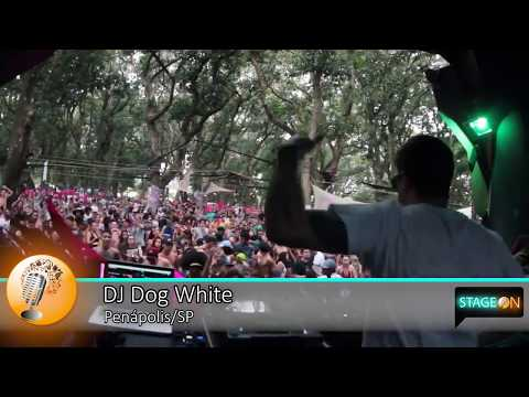 Festa com Música Eletrônica   DJ Dog White   Penápolis - SP   StageOn Brasil