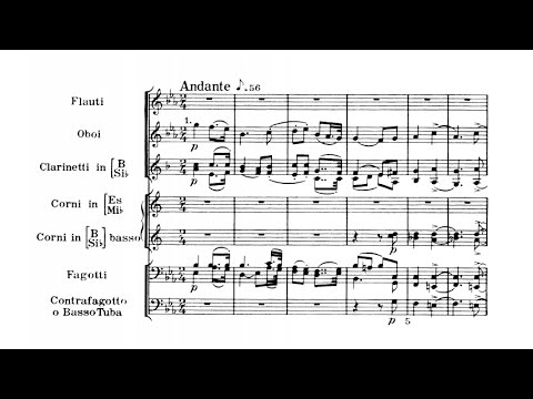 Richard Strauss - Serenade for wind ensemble Op. 7 (audio + sheet music)