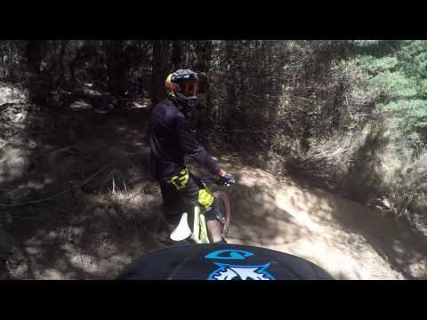 Yeah Yeah Gnar - Christchurch Adventure Park